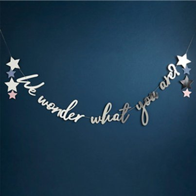 'We Wonder What You Are' Letter Banner - 2m