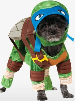 Leondardo Dog Costume - Small